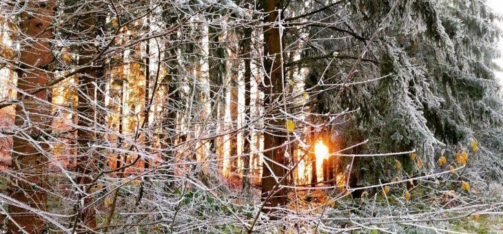 Advent – Wanderung in der dunklen Jahreszeit